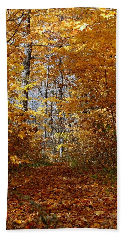 Autumn Bath Sheet featuring the photograph Beautiful Autumn Sanctuary by Kay Novy