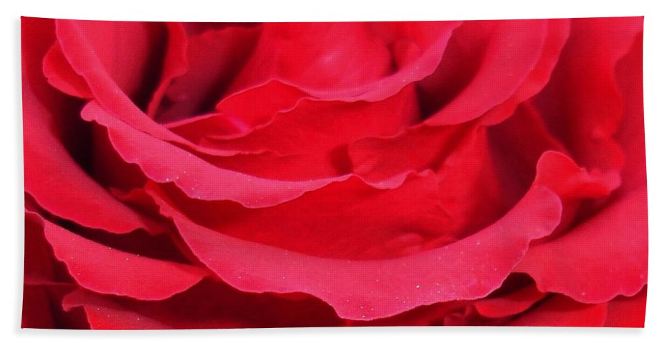 Rose Hand Towel featuring the photograph Beautiful Close Up Of Red Rose Petals by Taiche Acrylic Art