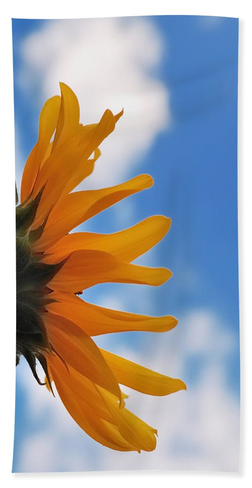 Flowers Hand Towel featuring the photograph Beautiful Day by Steven Milner