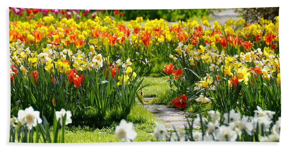 Path Hand Towel featuring the photograph Beautiful Garden by HHelene