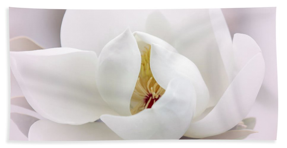 Macro Hand Towel featuring the photograph Beautiful Magnolia Bloom by Sabrina L Ryan