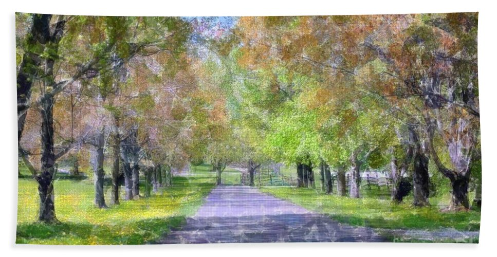 #knox Bath Sheet featuring the photograph Beautiful Pathway by Kathleen Struckle