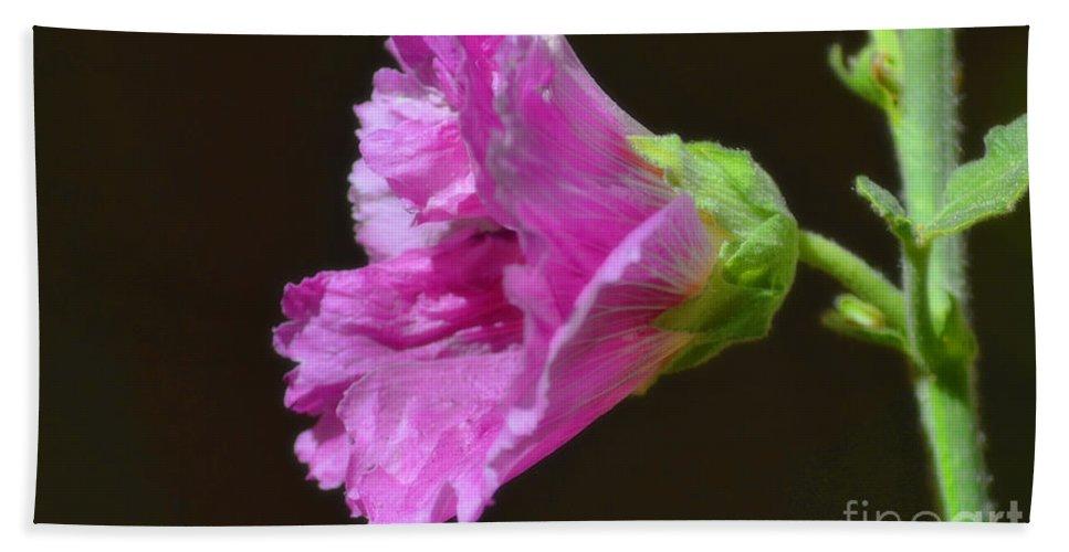 Fine Art Bath Sheet featuring the photograph Beautiful Purple Flower by Donna Greene