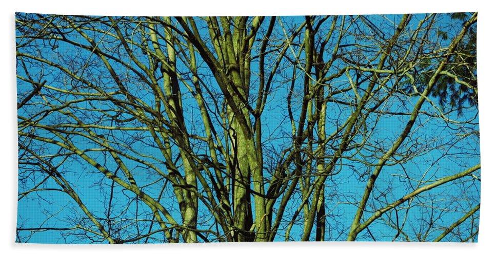 Sky Bath Sheet featuring the photograph Beautiful Turquoise Sky by Tara Shalton