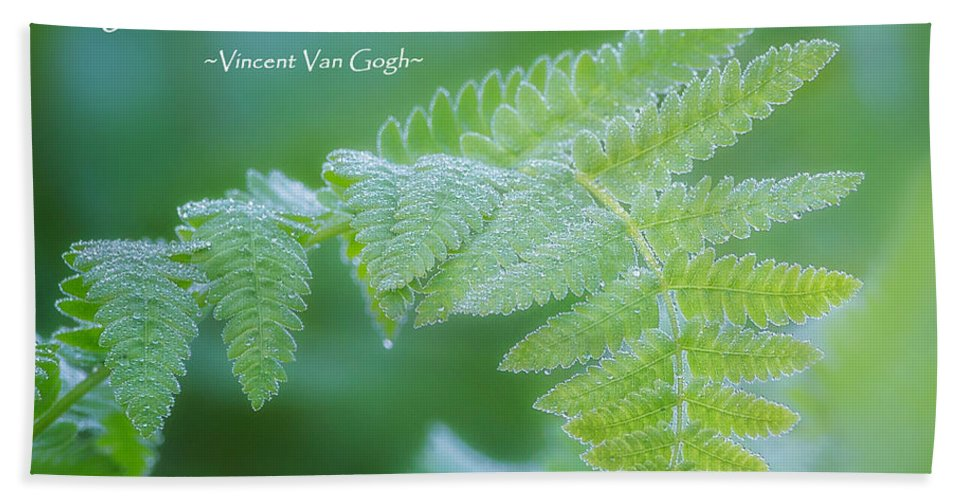 Green Hand Towel featuring the photograph Beauty Is Everywhere by Bill Wakeley