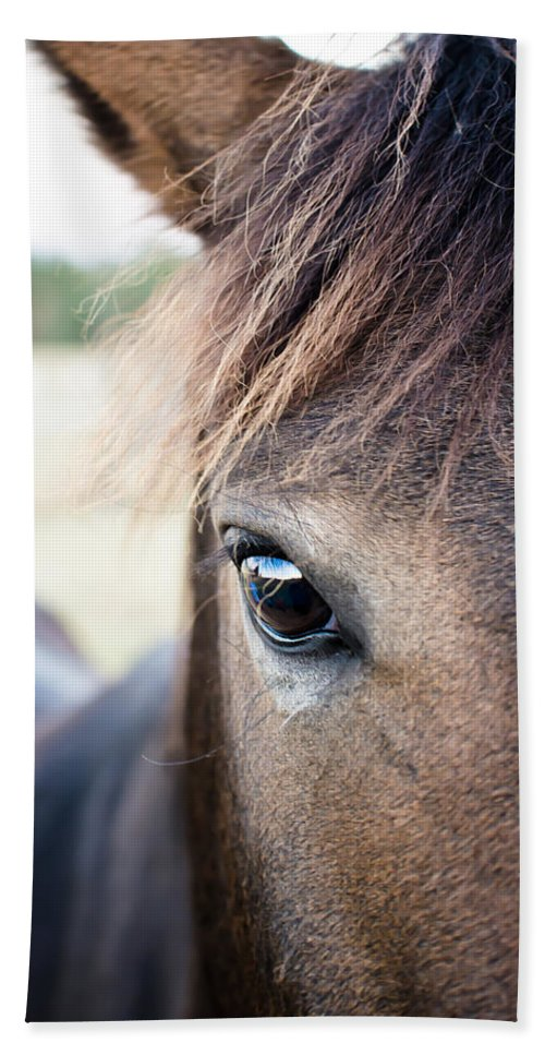 Horse Hand Towel featuring the photograph Beauty by Swift Family