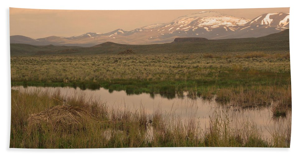 Beaver Lodge Bath Sheet featuring the photograph Beaver Lodge by Mike and Sharon Mathews