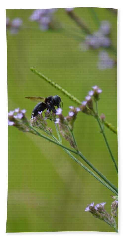 Bee Blue Bath Sheet featuring the photograph Bee Blue by Maria Urso