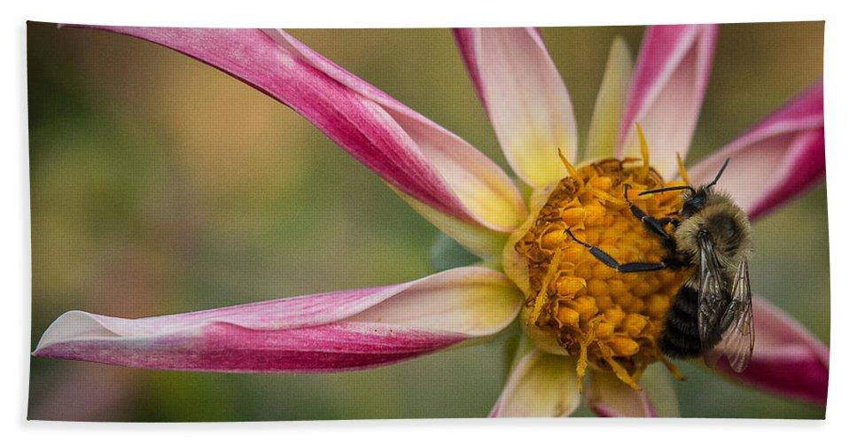 Dahlia Bath Sheet featuring the photograph Bee Enjoying A Willie Willie Dahlia by Joan Wallner