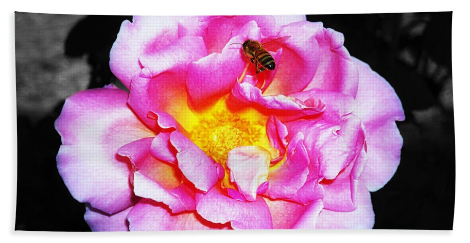 Bee Hand Towel featuring the photograph Bee Landing by Paul Wilford