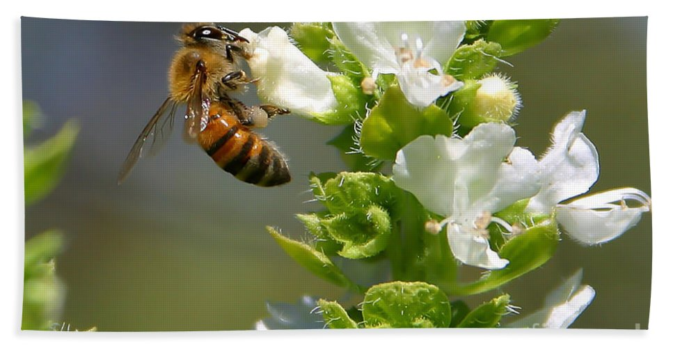 Bee Hand Towel featuring the photograph Bee On Basil by Nikki Vig