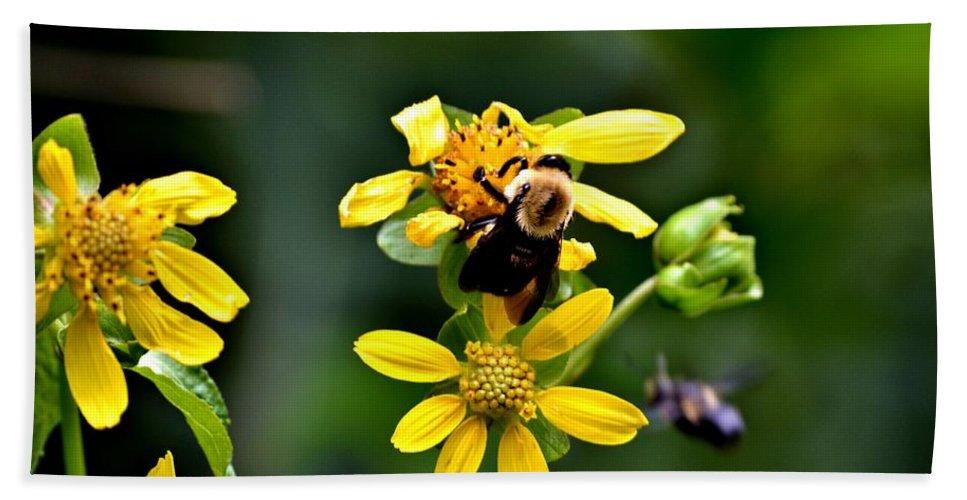 Bees Bath Sheet featuring the photograph Bees At Work by Tara Potts