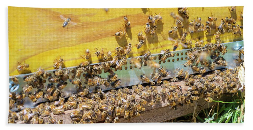 Abundance Bath Towel featuring the photograph Bees Swarming Around Entrance by Jason Langley