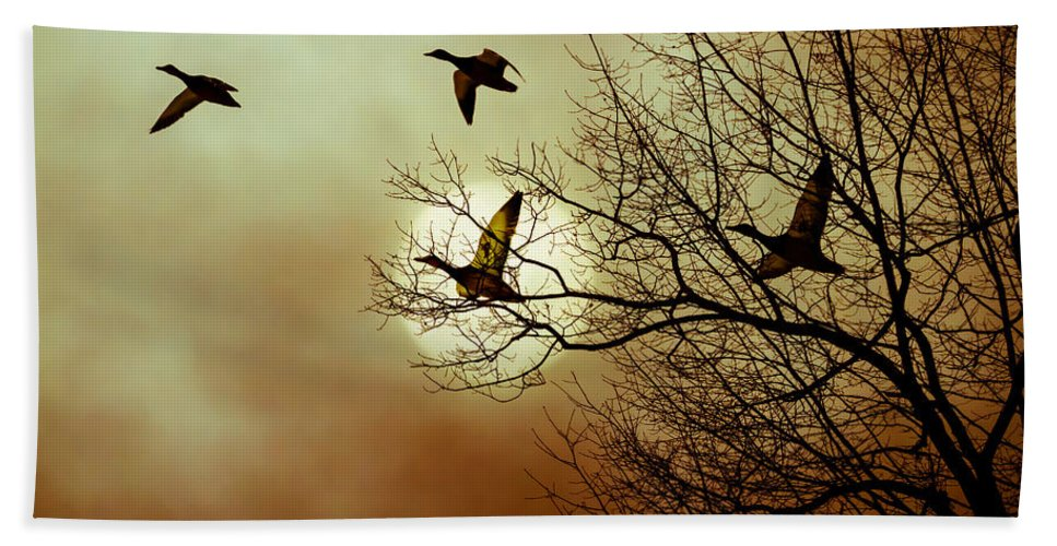 Duck Bath Sheet featuring the photograph Before A Winter Sky by Bob Orsillo