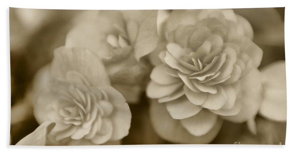 Begonia Hand Towel featuring the photograph Begonias In Sepia by Olga Hamilton