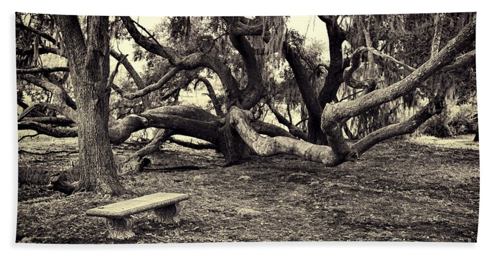 Trees Hand Towel featuring the photograph Bench And Trees Bw by David Arment