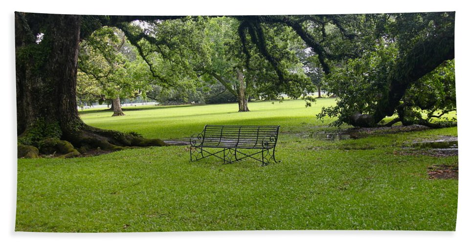 Tree Bath Sheet featuring the photograph Bench At Oak Alley Plantation by Denise Mazzocco