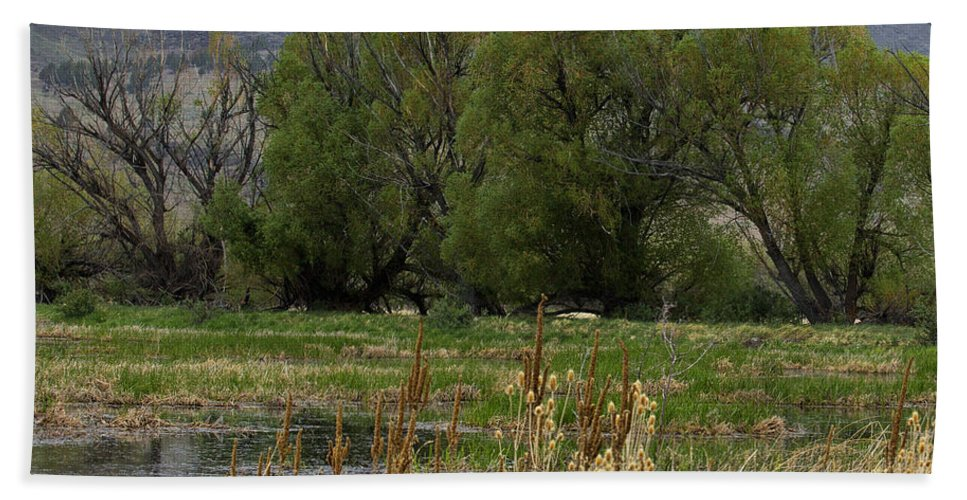 Benson Pond Hand Towel featuring the photograph Benson Pond by Belinda Greb
