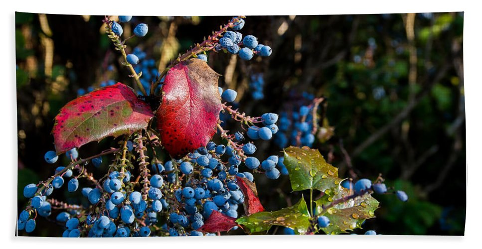 Wet Hand Towel featuring the photograph Berries And Red Leaves After The Rain by Mick Anderson