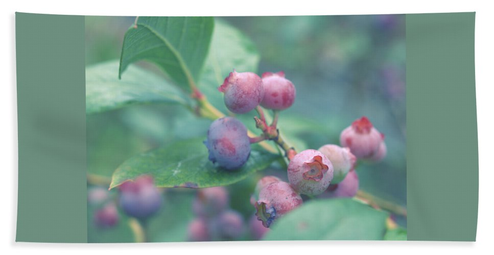 Berries Bath Sheet featuring the photograph Berries For You by Rachel Mirror