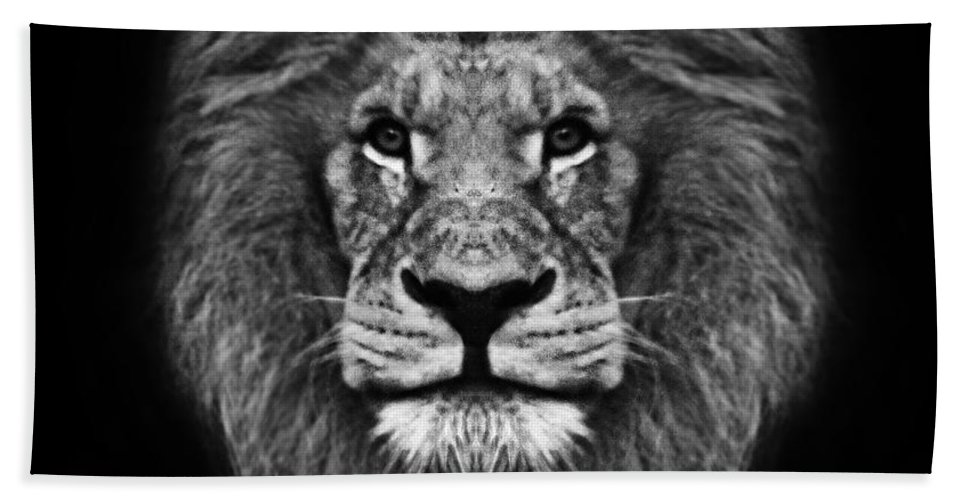 Animals Hand Towel featuring the photograph Big Cats 12 by Ben Yassa
