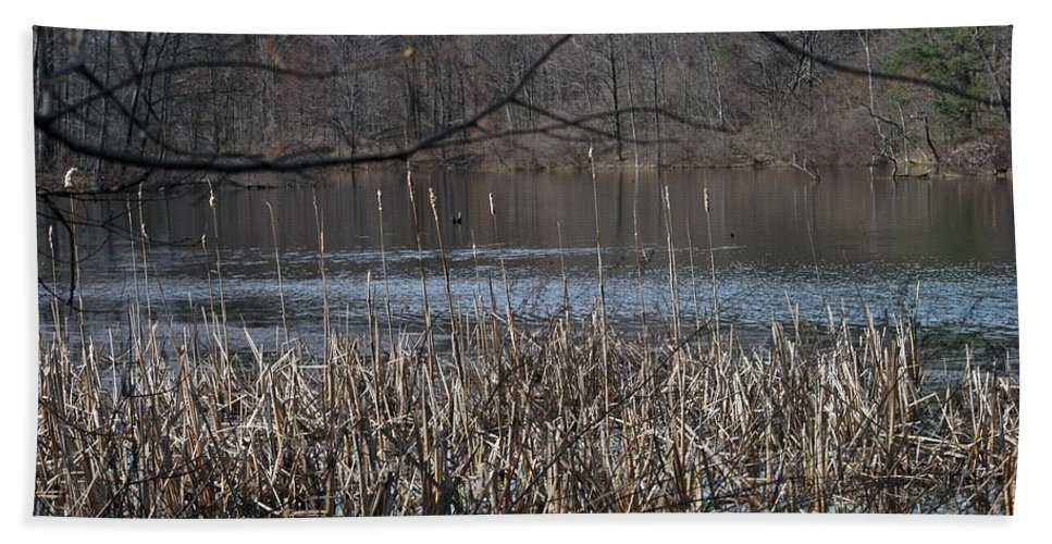 Burke Lake Hand Towel featuring the photograph Big Fish by Joseph Yarbrough