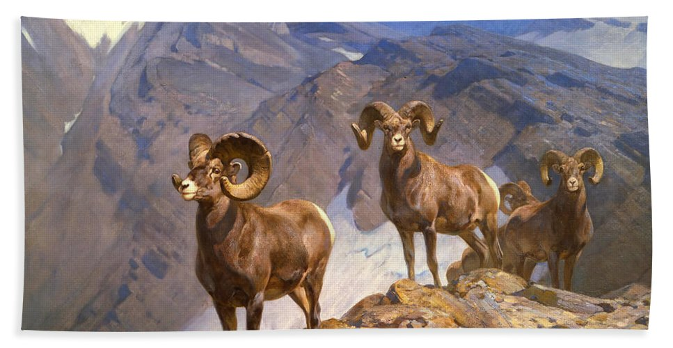 Big Horn Sheep Hand Towel featuring the painting Big Horn Sheep On Wilcox Pass by Mountain Dreams