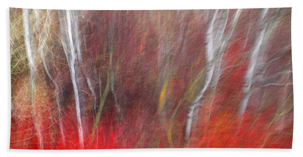 Blur Hand Towel featuring the photograph Birch Trees Abstract by Tara Turner