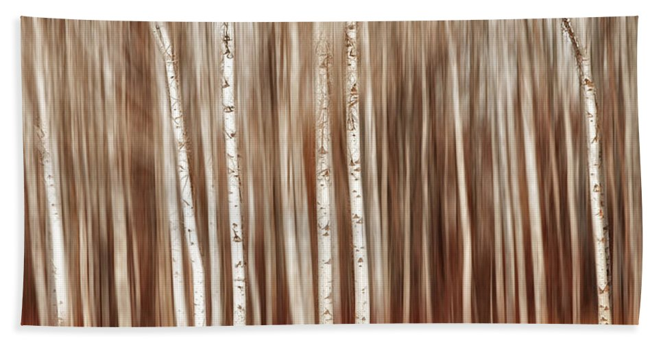 Birch Bath Sheet featuring the photograph Birches In Motion by Mary Jo Allen
