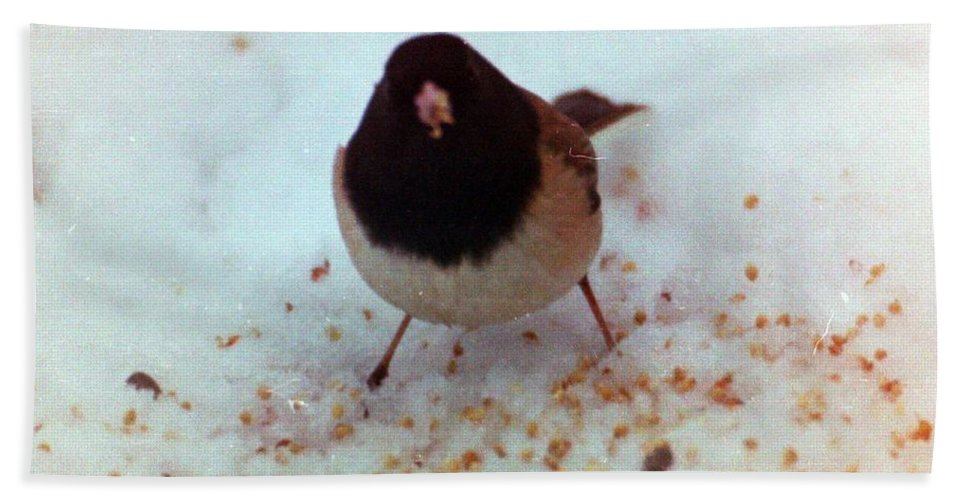 Birds Hand Towel featuring the photograph Bird In Snow by Karl Rose