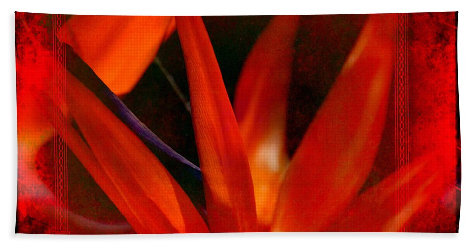 Bird Of Paradise Hand Towel featuring the photograph Bird Of Paradise Flower 5 by Susanne Van Hulst