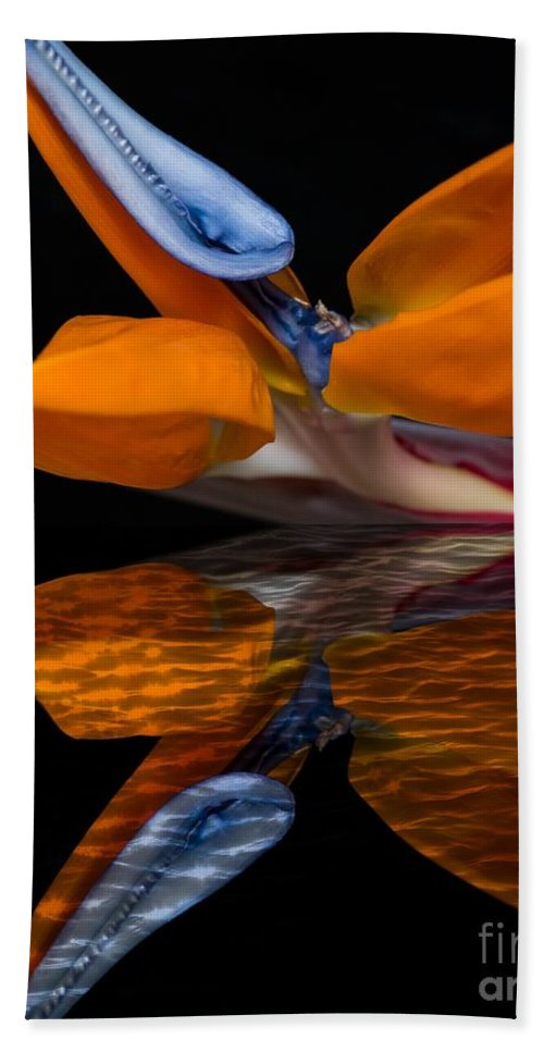 Bird Of Paradise Bath Sheet featuring the photograph Bird Of Paradise Reflective Pool by Michael Moriarty