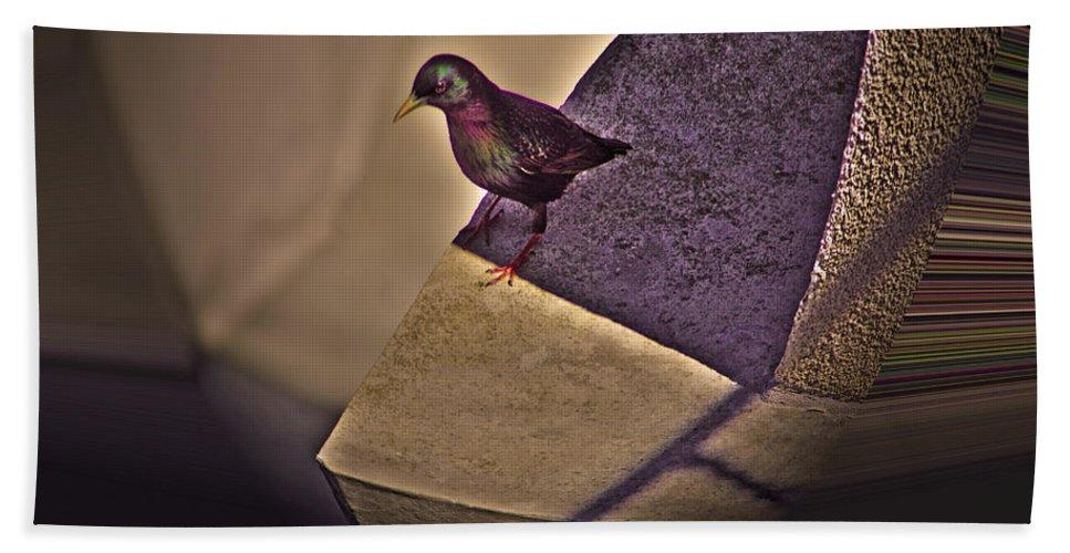 Bird Hand Towel featuring the photograph Bird On A Ledge by Robert Geary