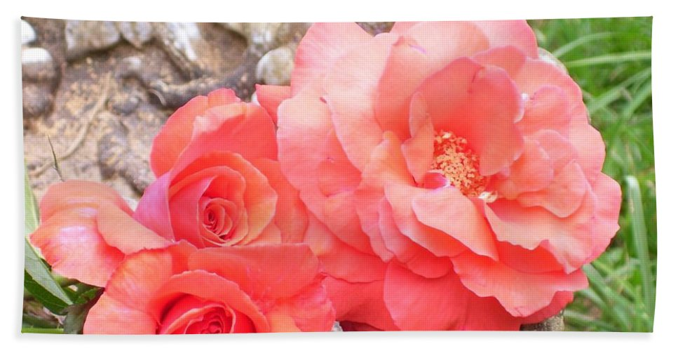 Floral Hand Towel featuring the photograph Birdbath Roses by Tammy Garner