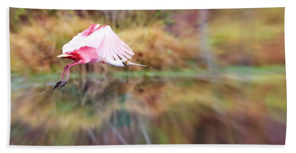 Spoonbill Hand Towel featuring the photograph Birds Eye View by Carol Groenen