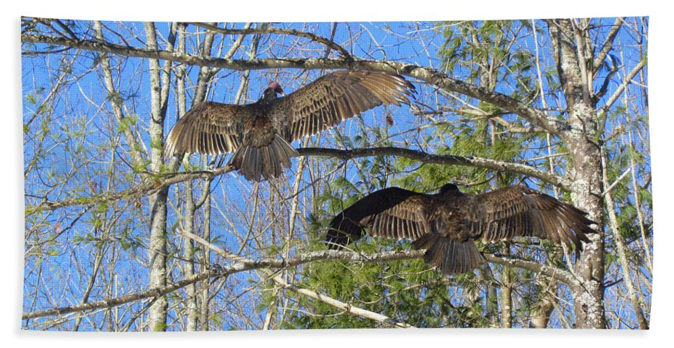 Turkey Vulture Hand Towel featuring the photograph Birds Of A Feather Flock Together by Elizabeth Dow