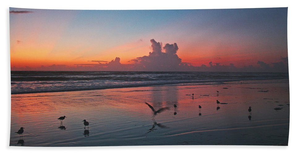 Sunrise Hand Towel featuring the photograph Birds On Beach by Shirley Roberson