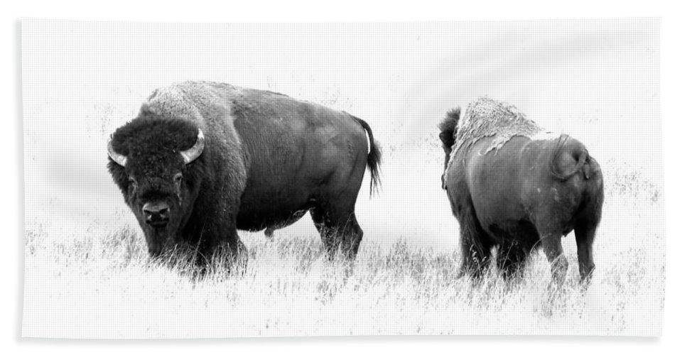 Bison Bath Sheet featuring the photograph Bison by Athena Mckinzie