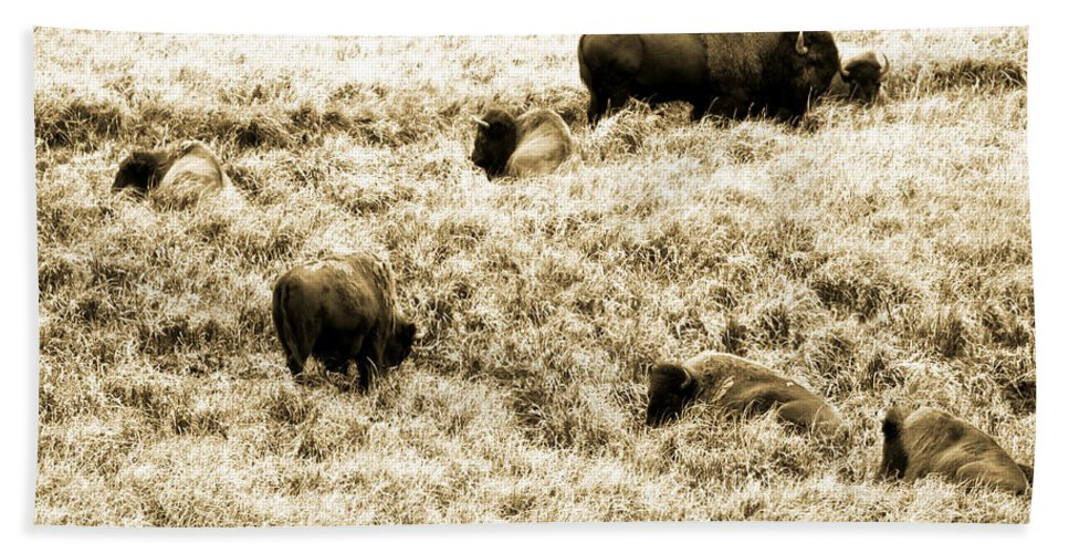 Bison Bath Sheet featuring the photograph Bison Herd by Crystal Heitzman Renskers
