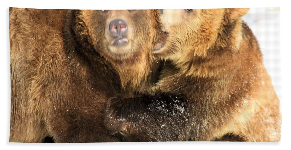 Grizzly Bear Hand Towel featuring the photograph Bite Me by Adam Jewell