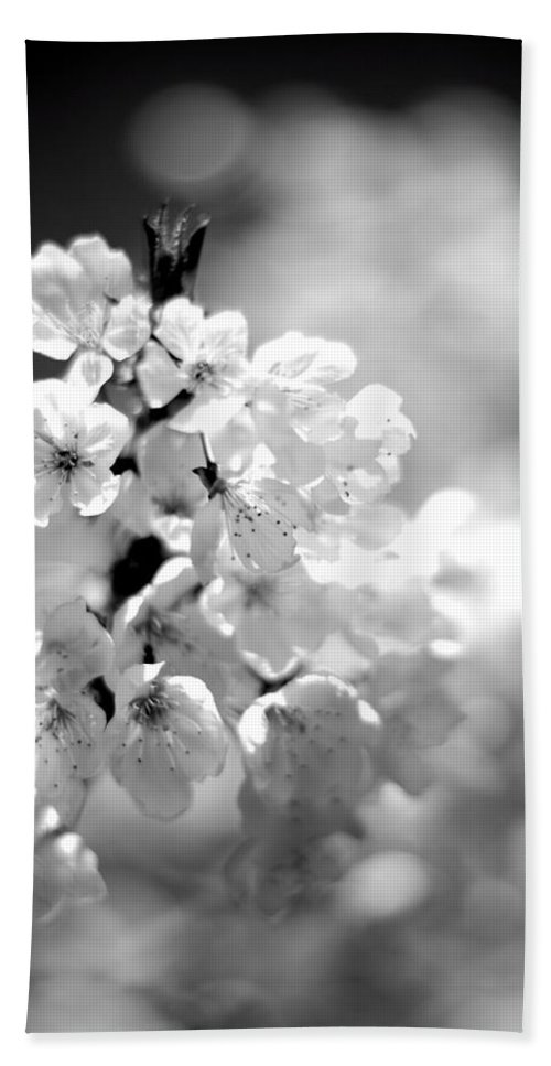 Black And White Blossoms Hand Towel featuring the photograph Black And White Blossoms by Scott Hill