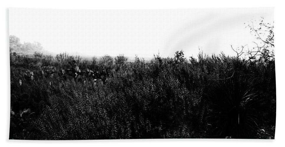 Wildflowers Hand Towel featuring the photograph Black And White Magic V2 by Douglas Barnard