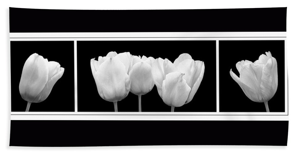 Black And White Flowers Hand Towel featuring the photograph Black And White Tulip Triptych by Gill Billington