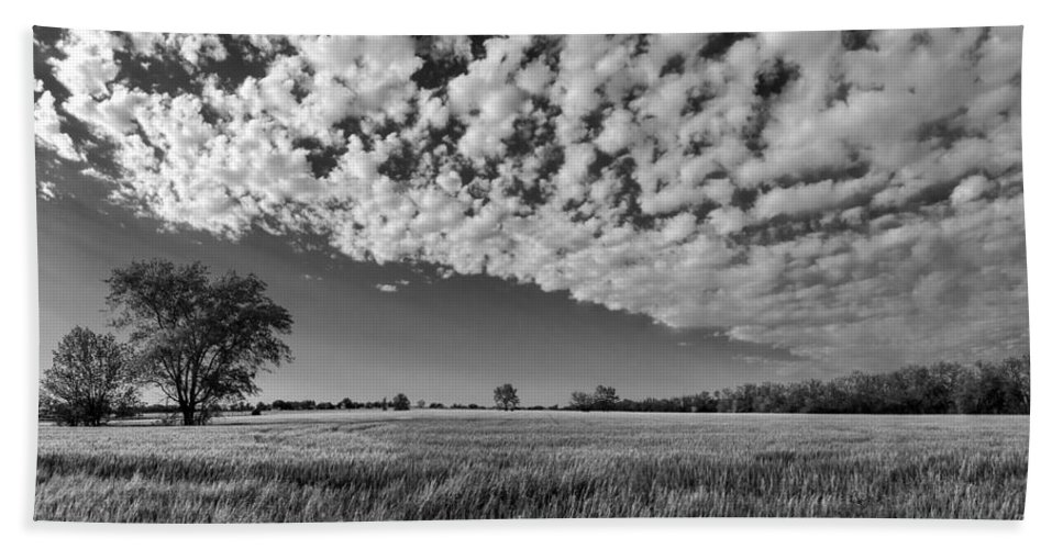 Black And White Bath Sheet featuring the photograph Black And White Wheat Field by Eric Benjamin