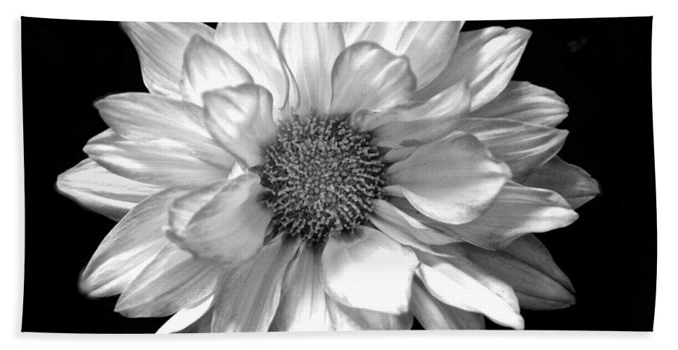 Black And White Flower Print Hand Towel featuring the photograph Black And White Zennia by Kristina Deane