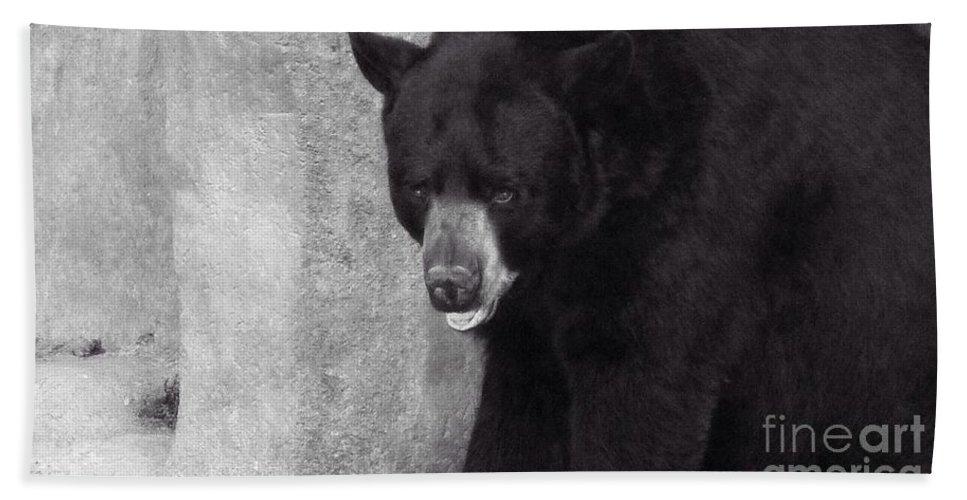 Black & White Photograph Black Bear Pose. Bath Sheet featuring the photograph Black Bear Pose by Susan Garren