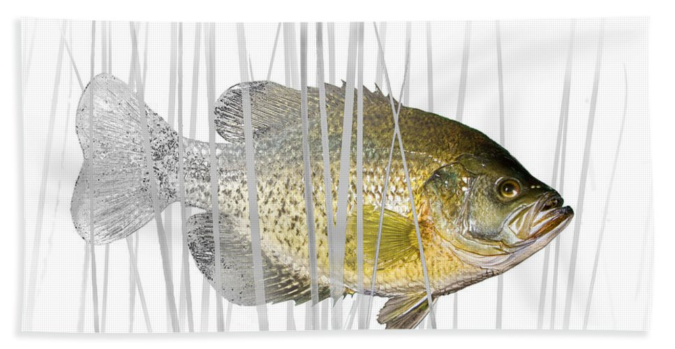 Crappie Bath Sheet featuring the photograph Black Crappie Pan Fish In The Reeds by Randall Nyhof