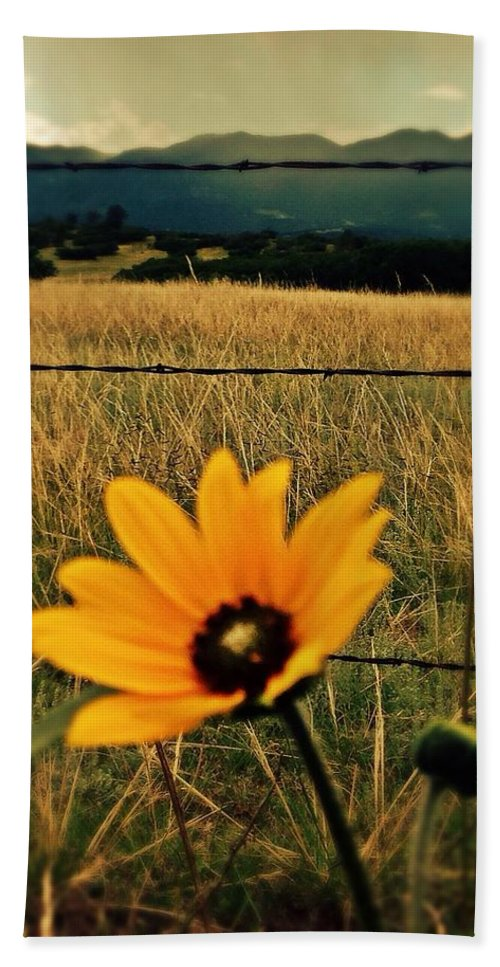 Trees Hand Towel featuring the photograph Black Eyed Susan by Sarah Jane Thompson