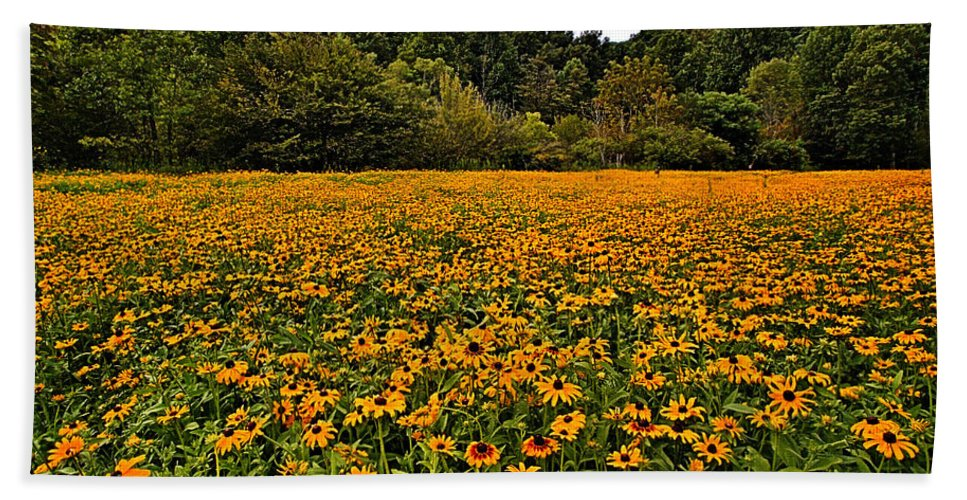 Black-eyed Susans Bath Sheet featuring the photograph Black-eyed Susans by Mel Hensley