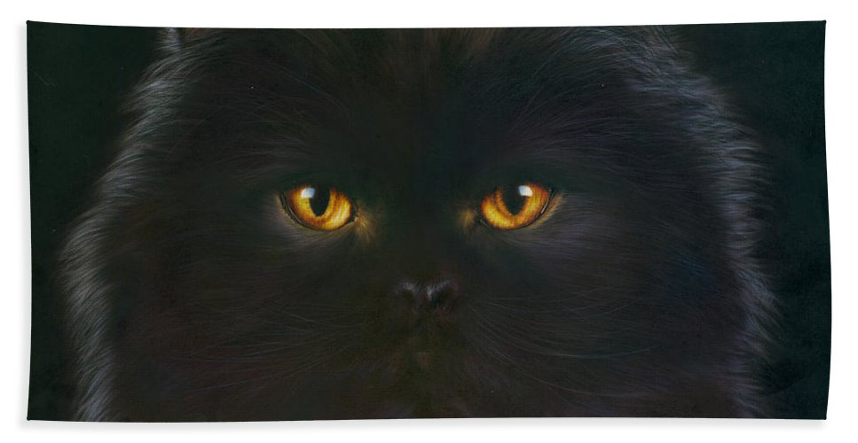 Andrew Farley Bath Towel featuring the photograph Black Persian by MGL Meiklejohn Graphics Licensing
